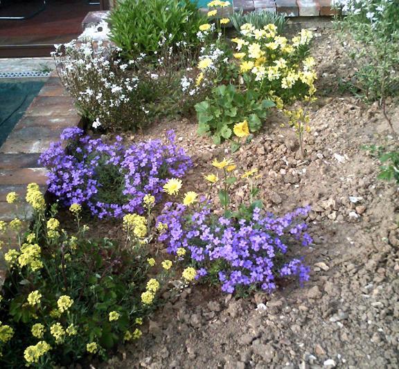 Conseillez moi un massif de plantes vivaces for Catalogue de plantes vivaces